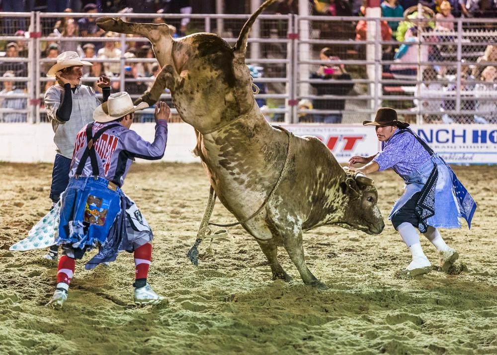 Dustin-DeYoe-Photography-Bull-Riding-21.jpg