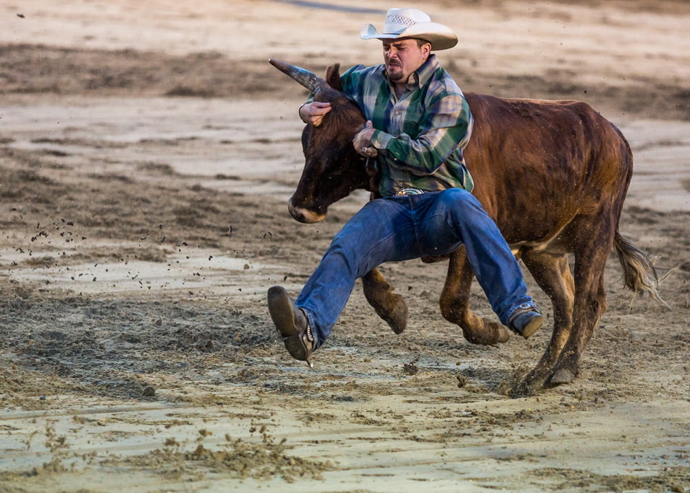 Dustin-DeYoe-Photography-Steer-Wrestling-4.jpg