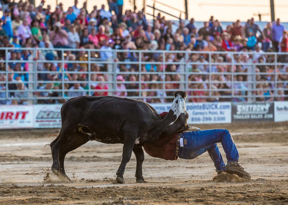 Dustin-DeYoe-Photography-Steer-Wrestling-10.jpg