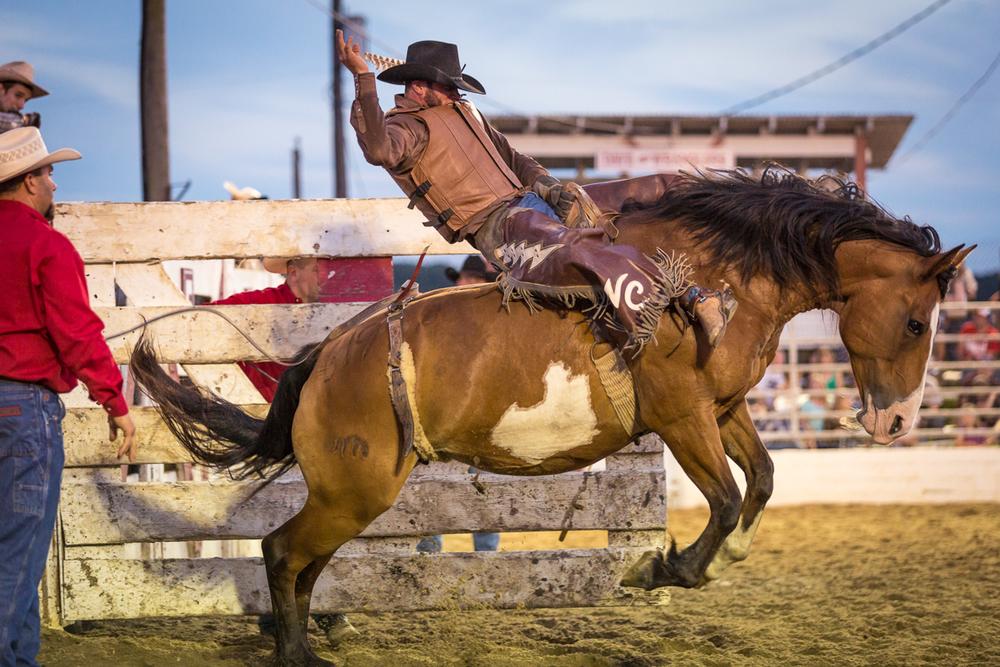 Dustin-DeYoe-Photography-Bronc-Riding-4.jpg