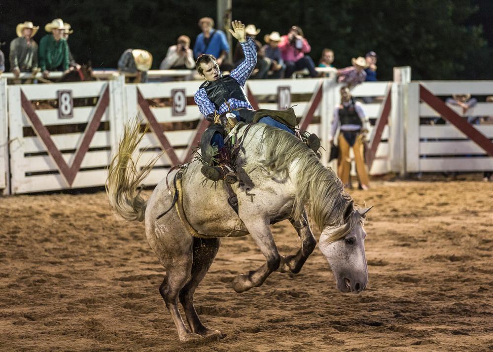 Dustin-DeYoe-Photography-Bronc-Riding-11.jpg