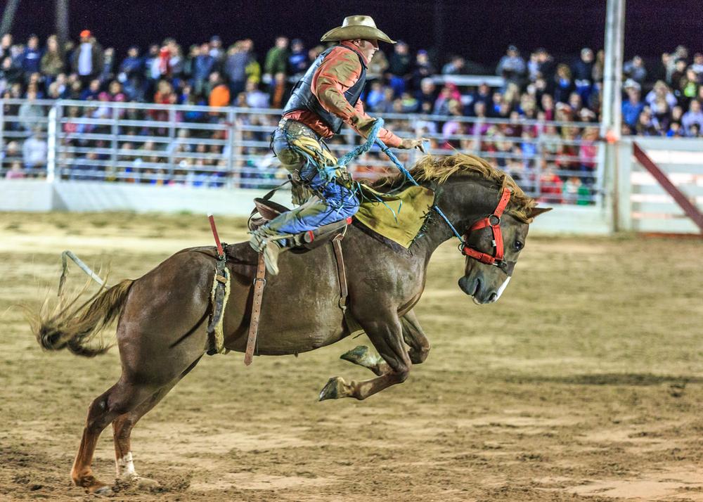 Dustin-DeYoe-Photography-Bronc-Riding-20.jpg