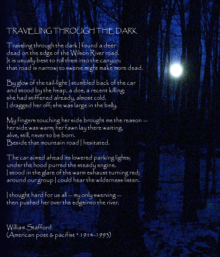 traveling through the dark