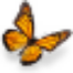 monarch-butterfly 74ppi.jpg