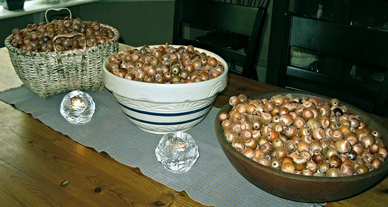 bowls of acorns