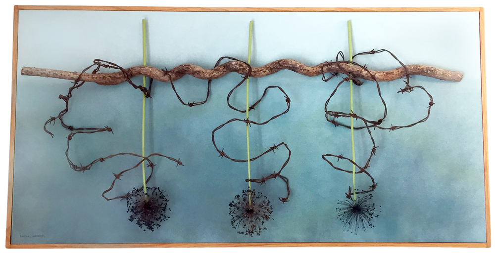 DAYNA WENZEL  :: UNDER THE SEA :: DRIED ALLIUM, BITTERSWEET VINE, BARBED WIRE, CANVAS, PAINT
