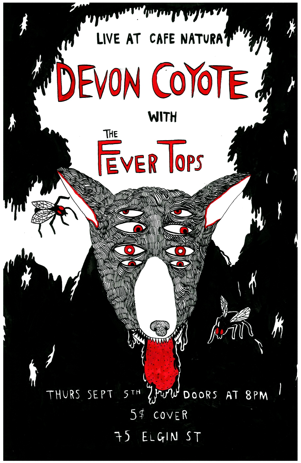 Devon Coyote.jpg