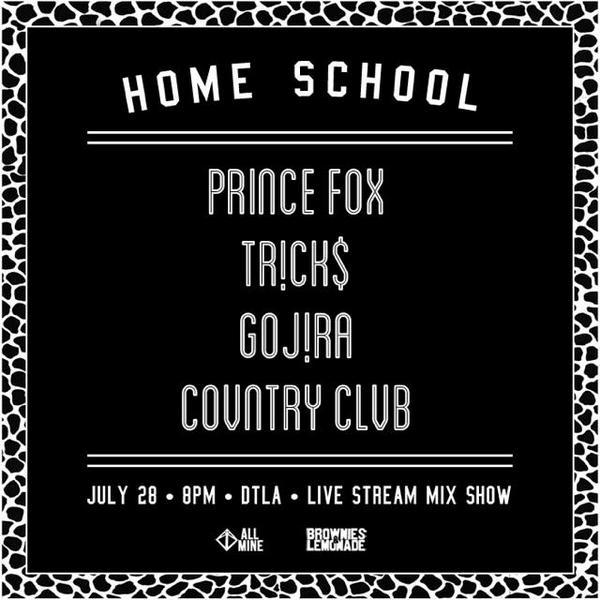 Homeschool prince fox