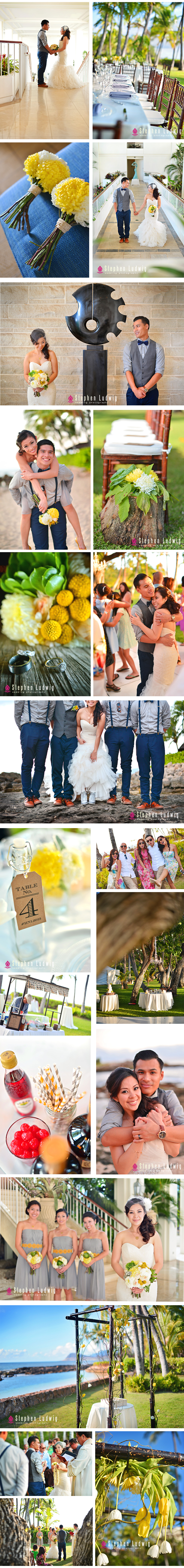 Hugh-and-Linda-Stephen-Ludwig-Hawaii-Wedding-Photography-2