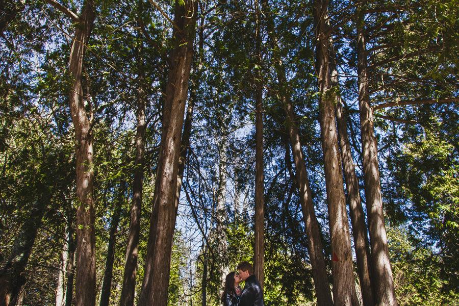 Isos Photography   Weddings, Engagements, Portraits, Travel