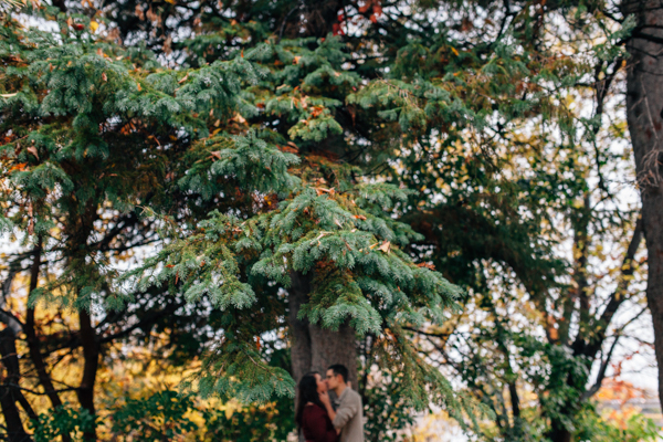 Artistic Engagement Photography Ottawa - isos photography