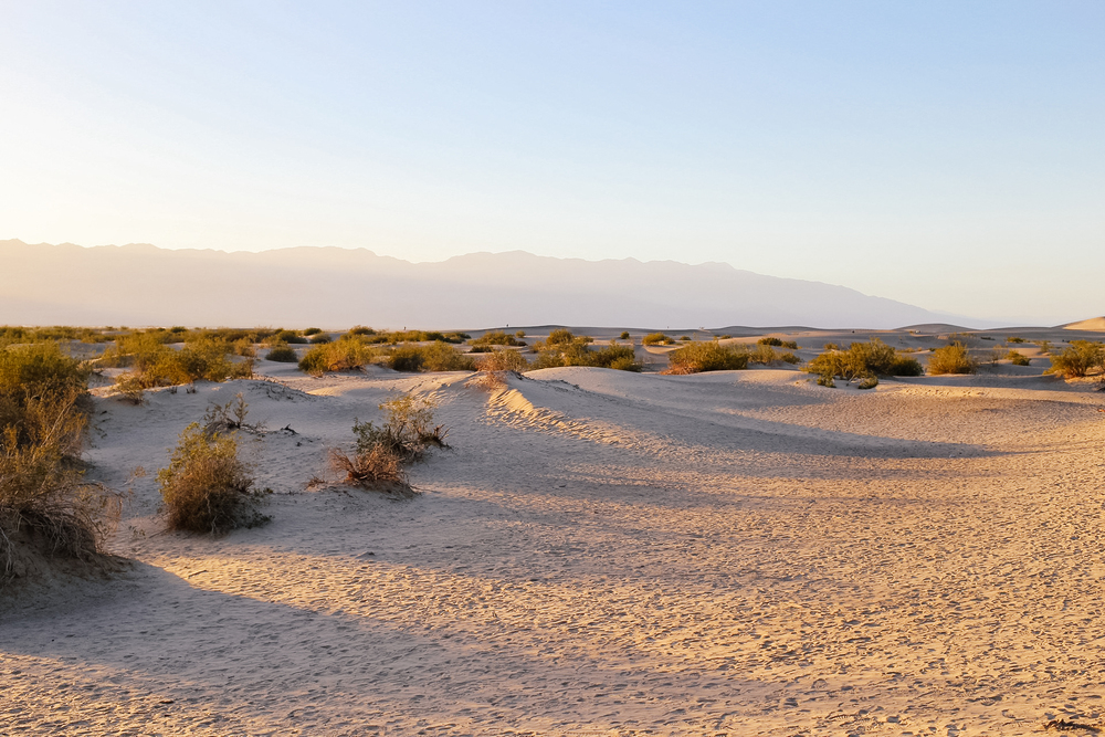 Sand Dunes California