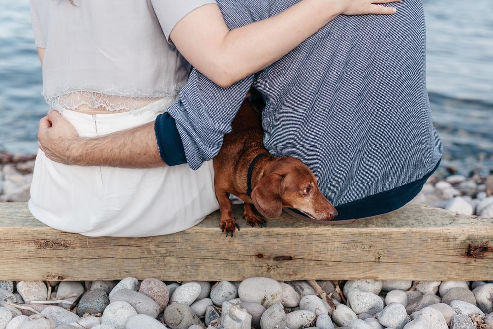 Puppy Engagement Photography Toronto Ontario