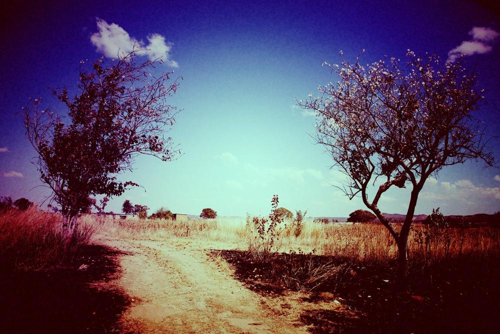 landscapes 3.jpg