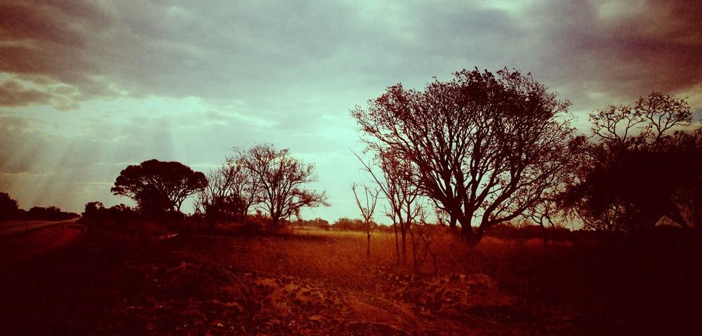 landscape wide 2.jpg