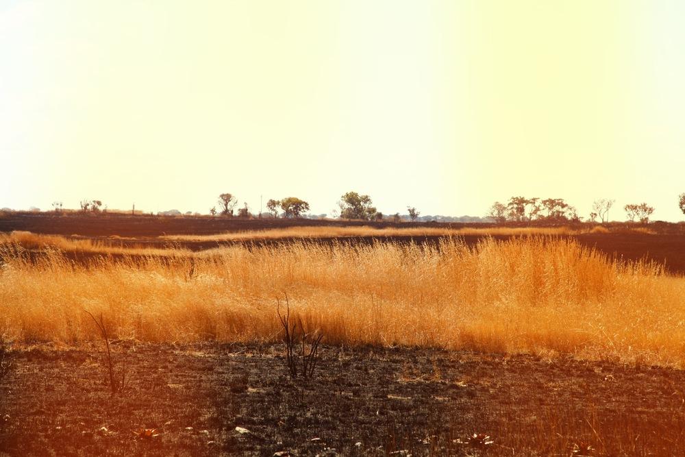 colourful landscape.jpg