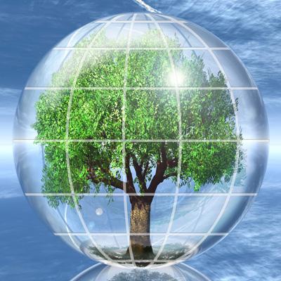 pic_tree-globe-400pxl.jpg