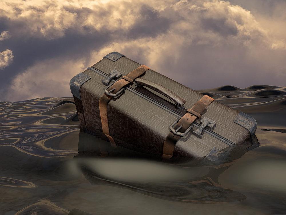 Geert Egghe - valies