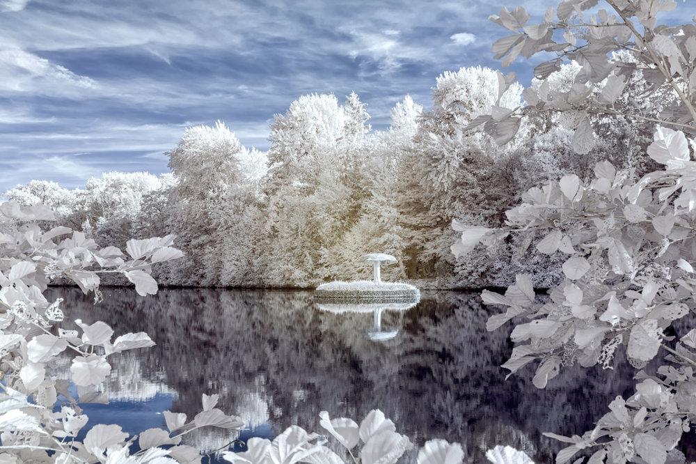 Martine De Flander - natuurlijk landschap