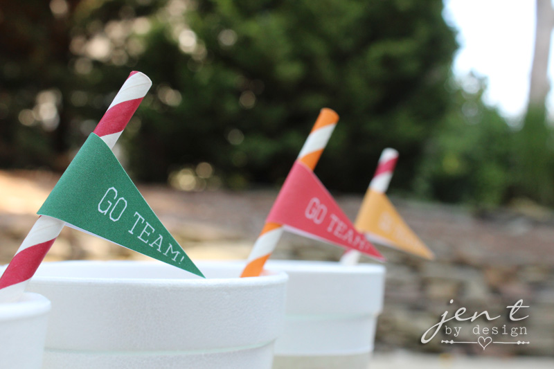 Football Tailgate Ideas - FREE Football Pennant Straw Flags