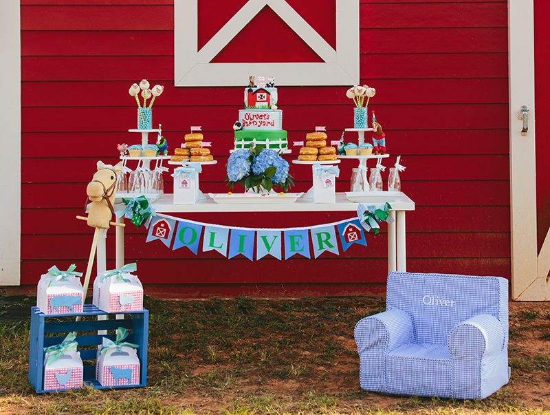 Barnyard Bash - Farm Birthday Party