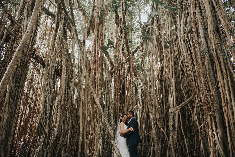 florida treetop wedding photography