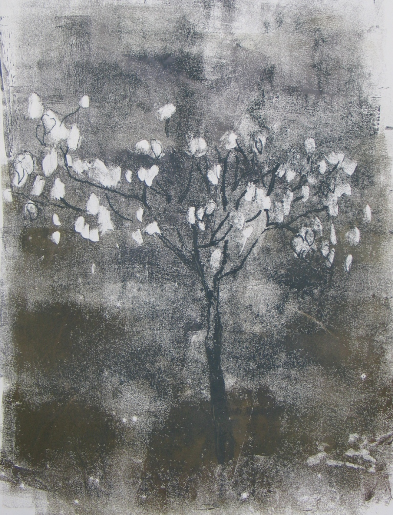 Handkerchief tree  (Davidia Involucrata), unique monotype, 2013