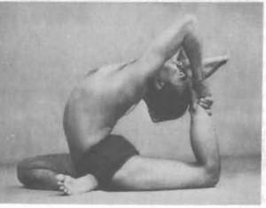 "This pose, a pigeon variation, is often a ""dream goal"" pose for yoga folks.  Does this degree of spinal flexibility necessarily serve us all?  Perhaps not."