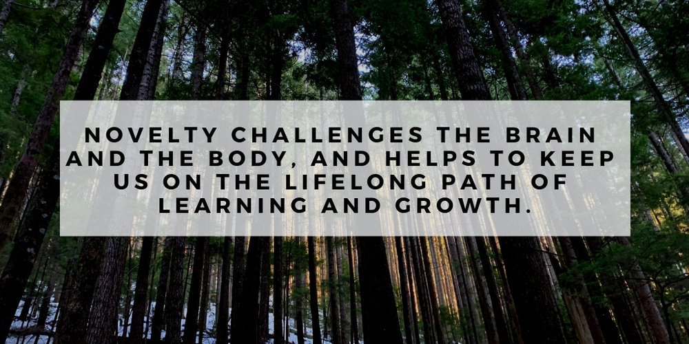 Novelty challenges the brain and the body, and helps to keep us on the lifelong path of learning and growth..jpg