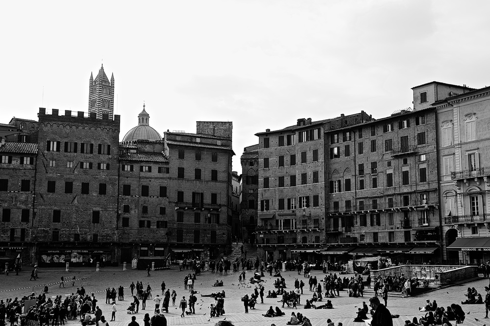 roofs-of-siena-toscana-tuscany-denis-bosnic-photography- 12.jpg