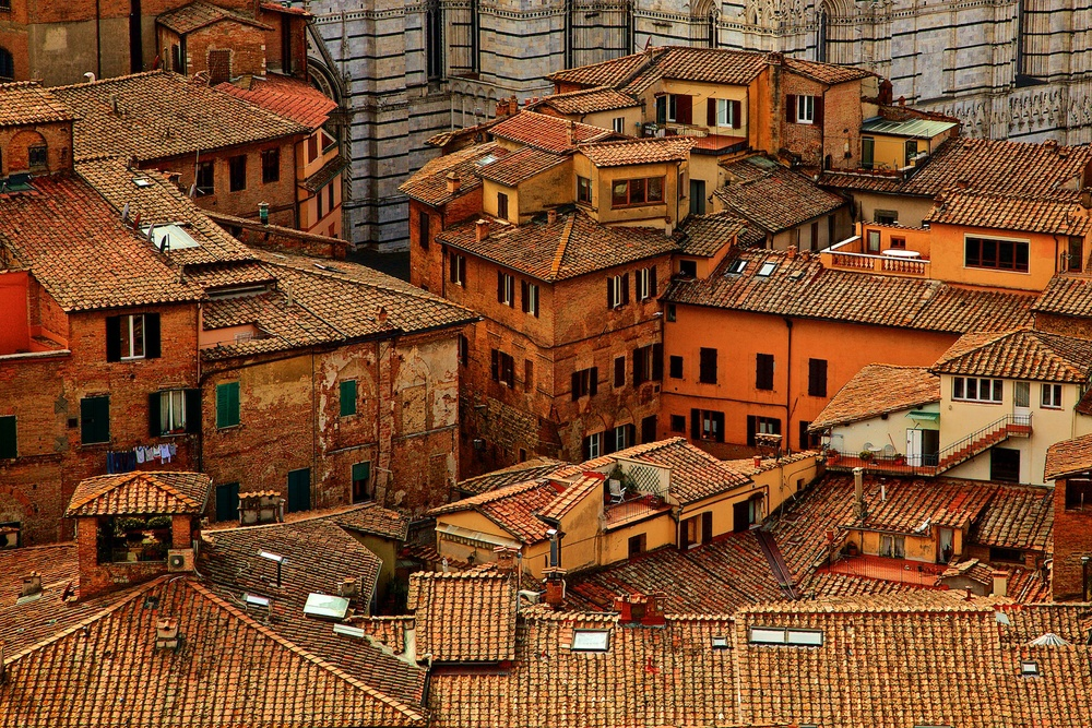 roofs-of-siena-toscana-tuscany-denis-bosnic-photography- 11.jpg