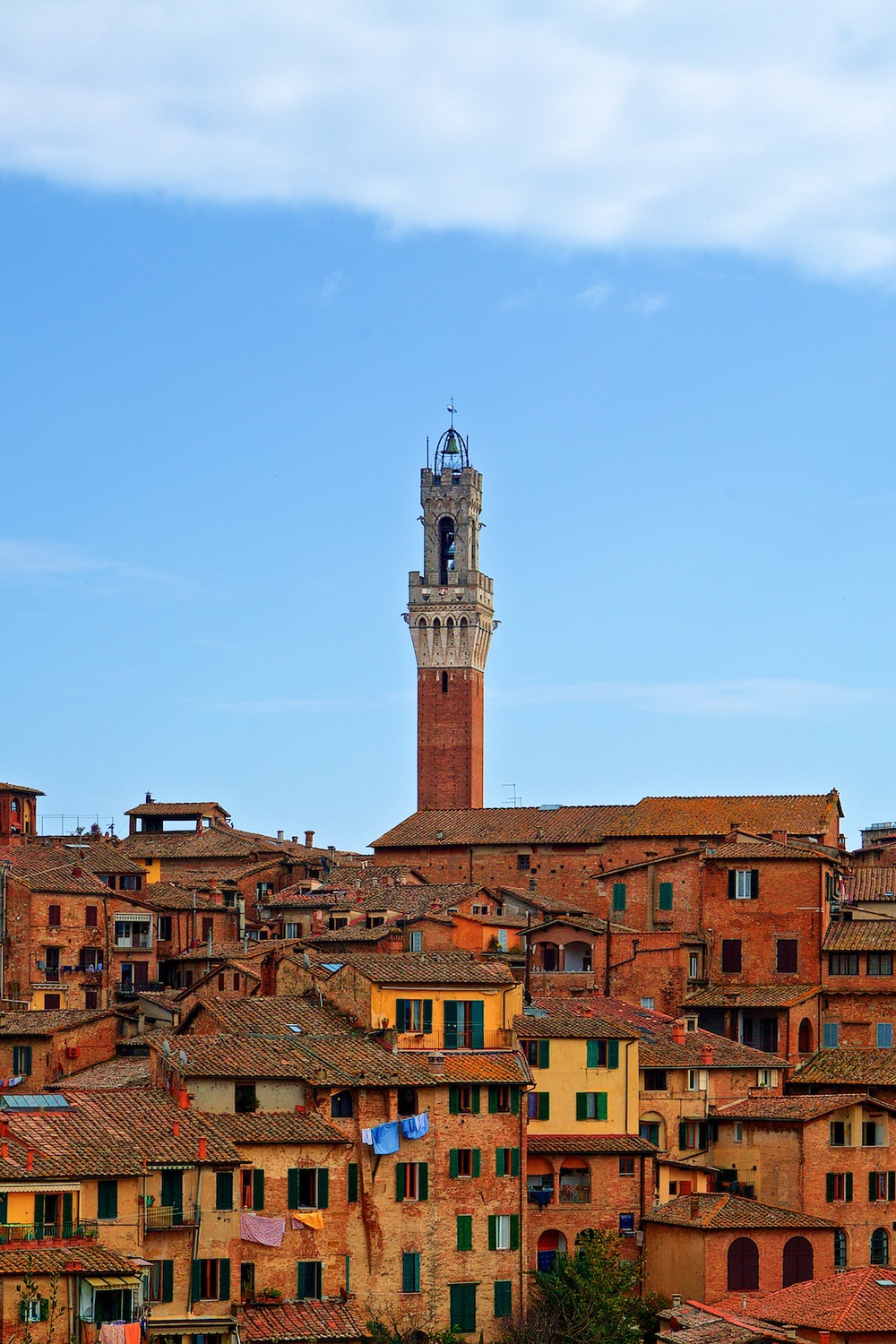 roofs-of-siena-toscana-tuscany-denis-bosnic-photography- 1.jpg