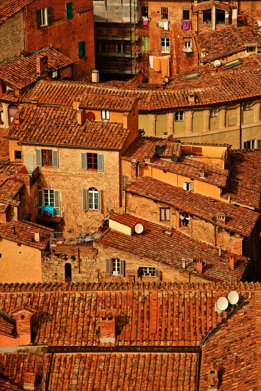 roofs-of-siena-toscana-tuscany-denis-bosnic-photography- 10.jpg