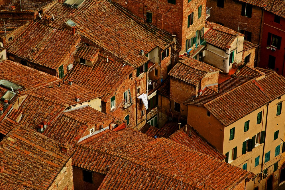 roofs-of-siena-toscana-tuscany-denis-bosnic-photography- 7.jpg