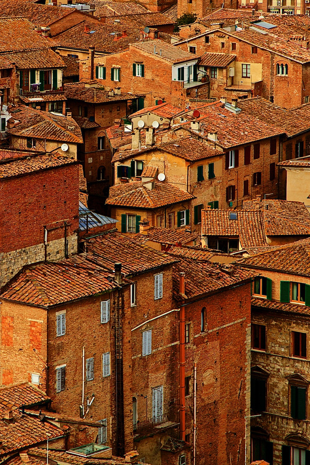 roofs-of-siena-toscana-tuscany-denis-bosnic-photography- 9.jpg