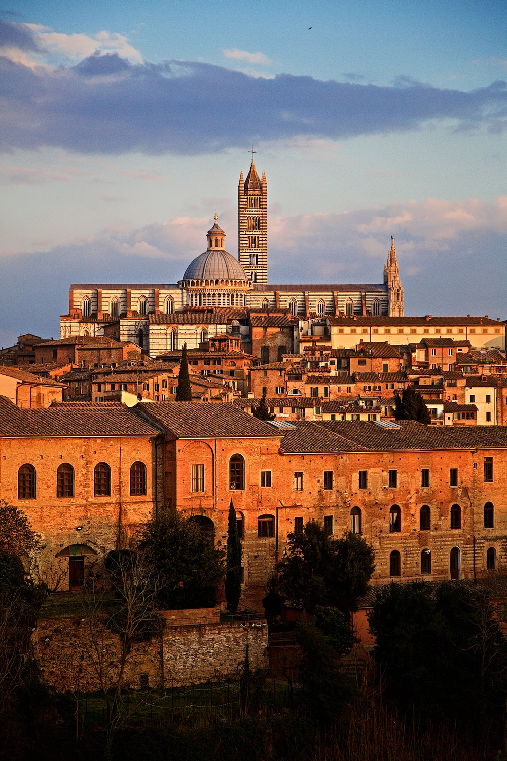 roofs-of-siena-toscana-tuscany-denis-bosnic-photography- 14.jpg