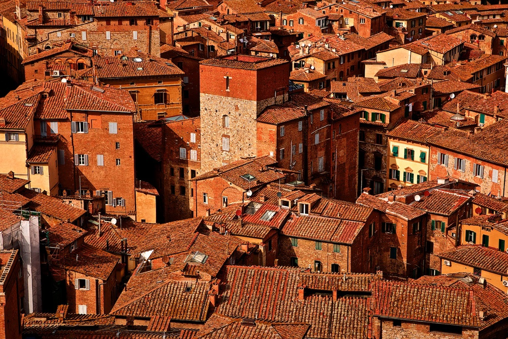 roofs-of-siena-toscana-tuscany-denis-bosnic-photography- 6.jpg