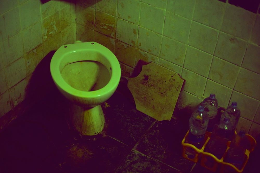 Ramona's Toilet (after a client visits)