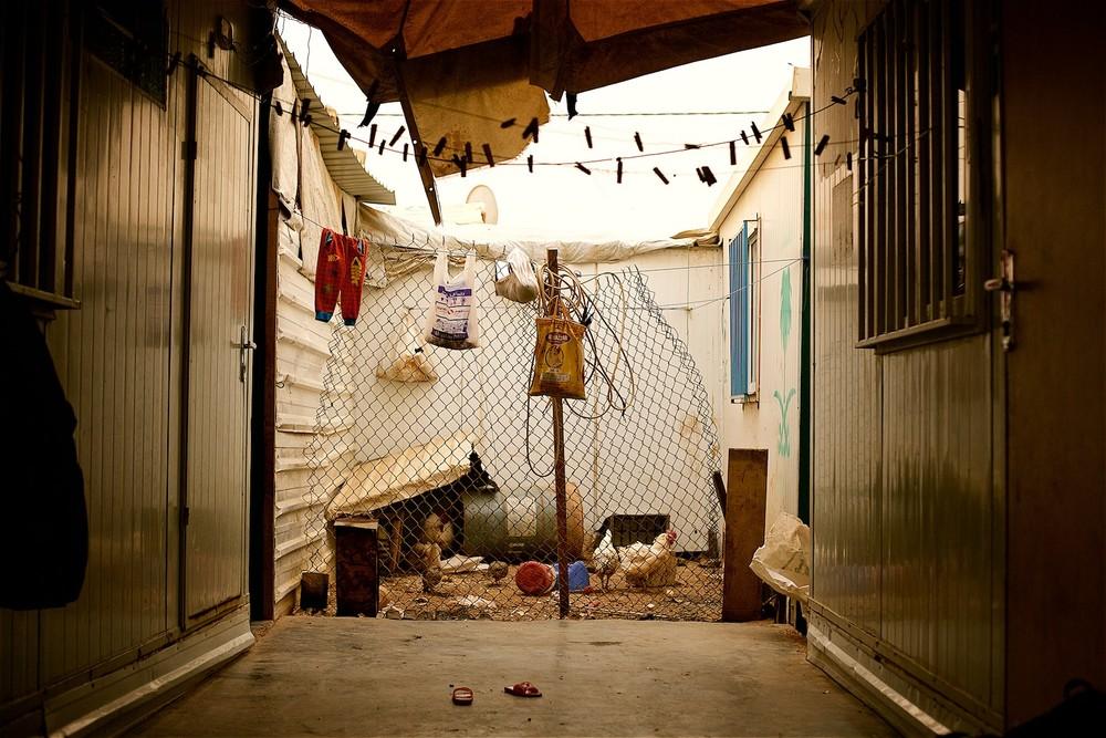 """Keďže karavany a stany UNHCR nie je dovolené upravovať, Abdullah bez akéhokoľvek zásahu do nich medzi dvoma susednými vybudoval malý dvor s plotom pre sliepky. """"Deti takto majú mäso aspoň raz do mesiacia,"""" hovorí Abdulla. (photo: Denis Bosnic)"""