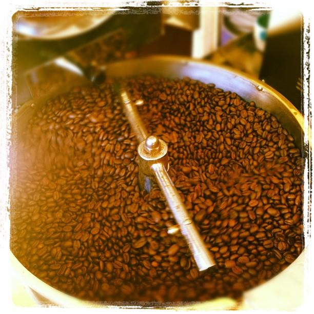 Espresso - brice pic.jpg