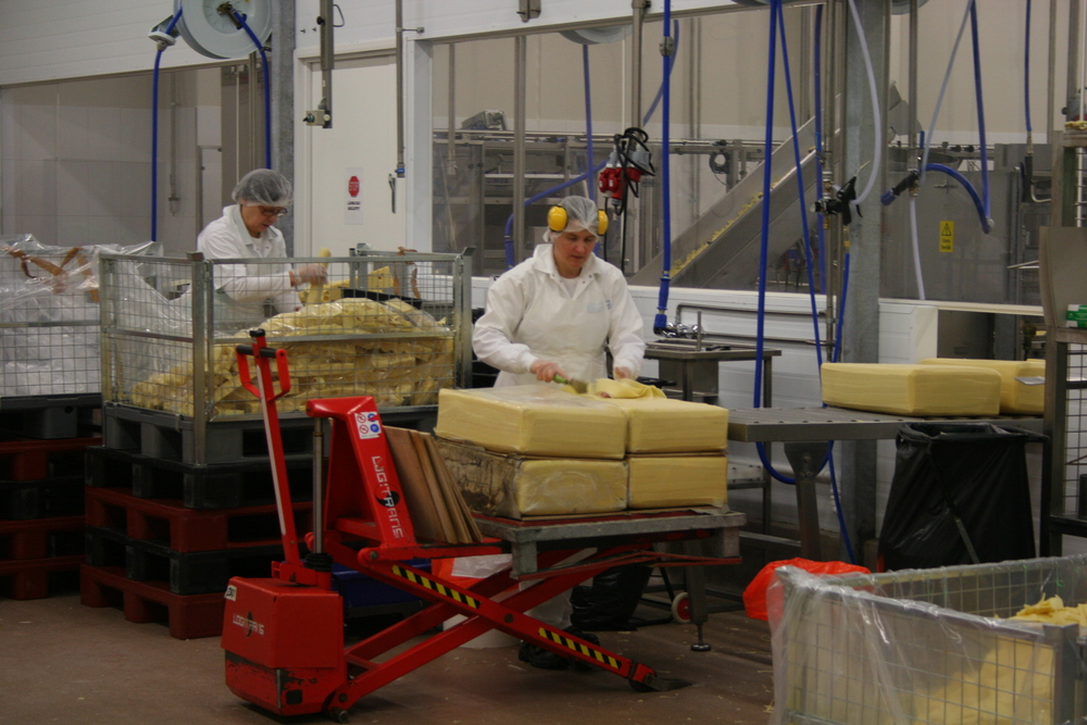 Cheese factory employees trim the blocks of cheese before shipment.