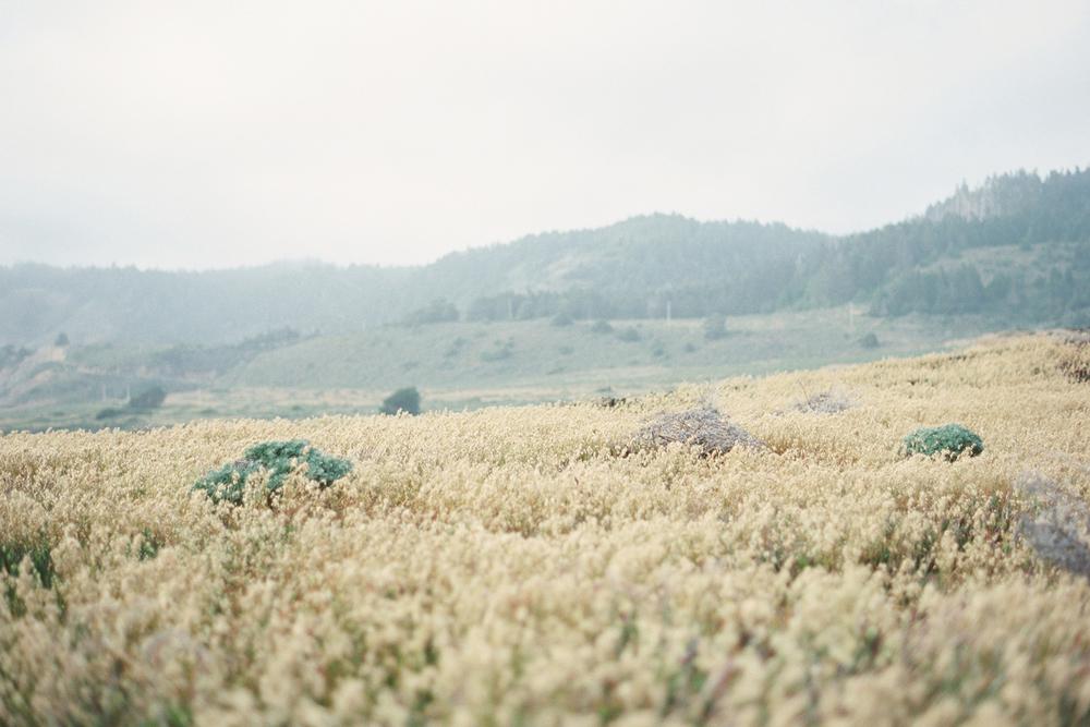 Emily-Ann-Hughes-Photography-Erich-Mcvey-Workshop-California-0069.jpg