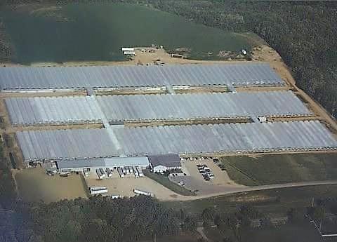 Wenke Greenhouses • Kalamazoo, MI