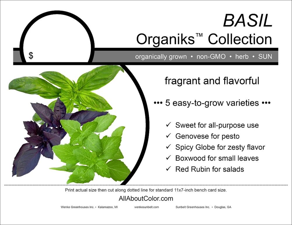 Basil (Sunbelt) bench card |  pdf