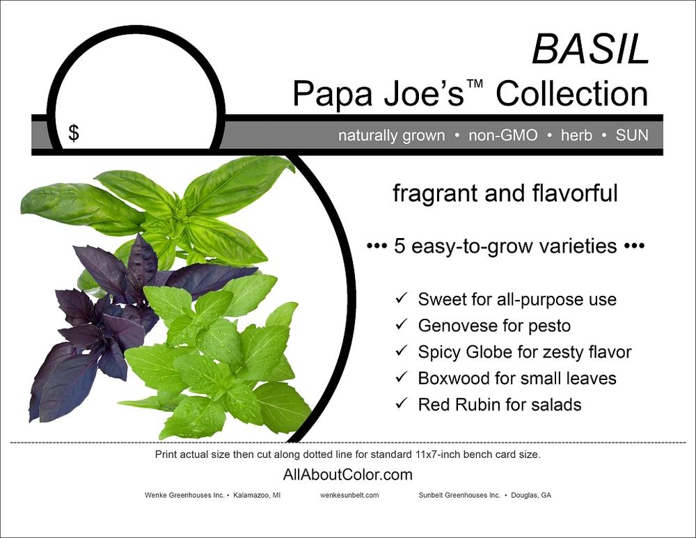 Basil (Wenke) bench card |  pdf