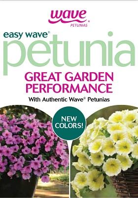 Petunia Easy Wave Page >