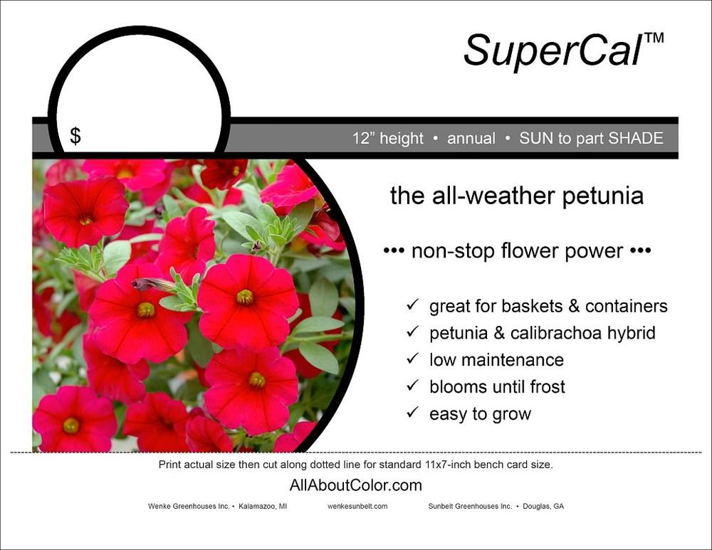 SUPERCAL Bench card |  PDF