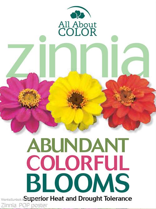 zinnia Page >