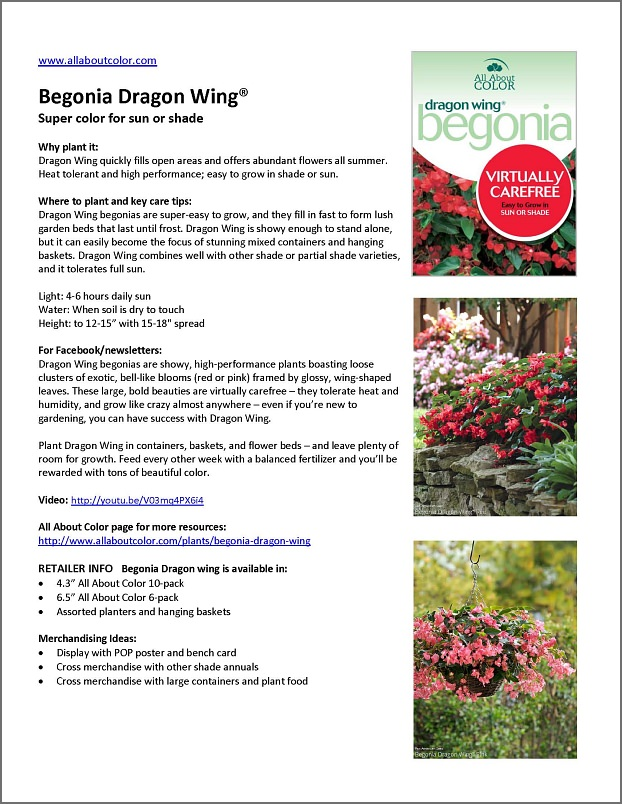 Begonia Dragon Wing |  DOC  |  PDF  |