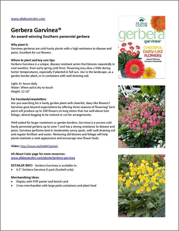 Gerbera GArvinea |  DOC  |  PDF  |